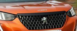 importateur Peugeot